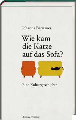 "Coverabbildung von ""How did the cat get on the sofa?"""